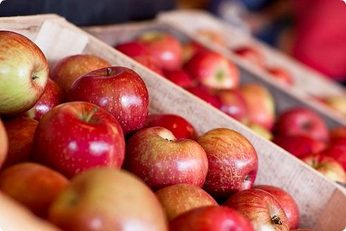 inside apples photos tumblr - 1024×683